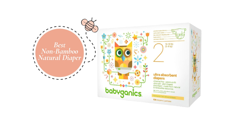Best Non-Bamboo Natural Diaper - Babyganics