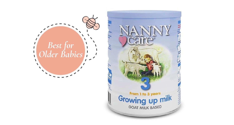 Best for Older Babies -Nanny Care