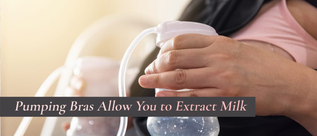 Allow You to Extract